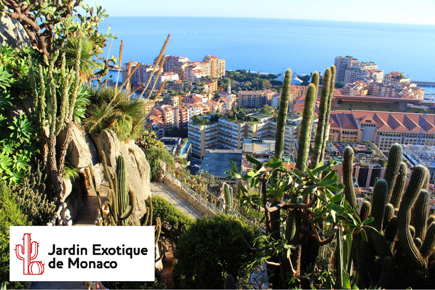Part jardins exotiques monaco cmcas de nice - Jardin exotique sale nice ...